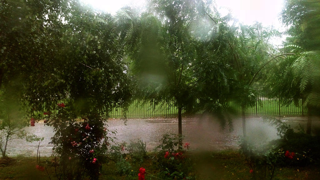 heavy rain through my window... by ErvinOgrasevic
