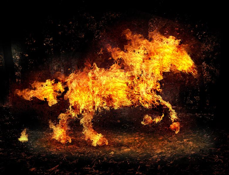 Fire Horse By Salhi On DeviantArt