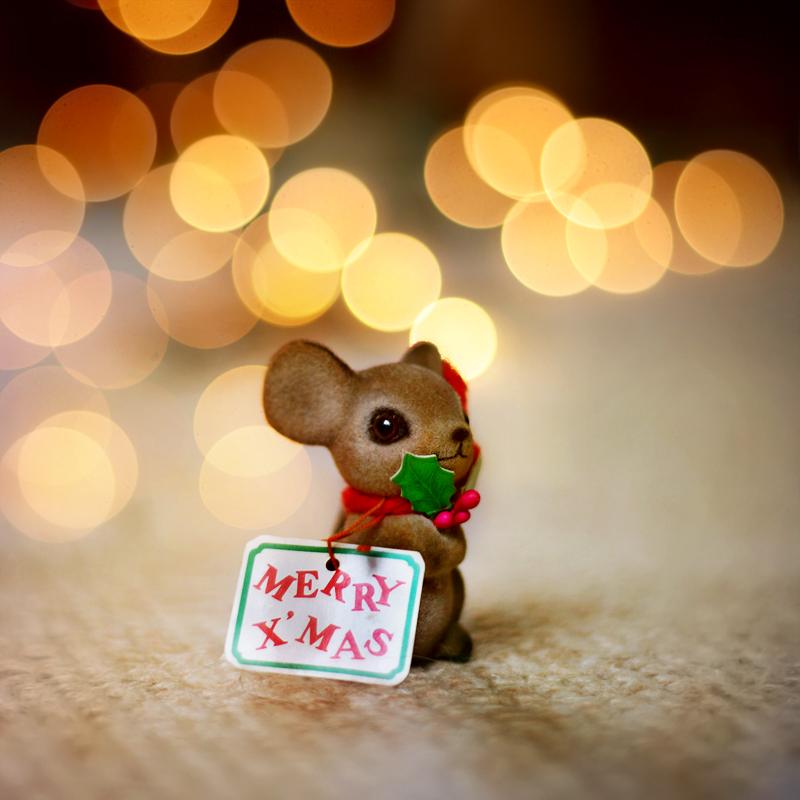 Merry Xmas Bokehmon by P0RG