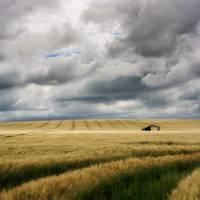 Generic Barn Photo by P0RG