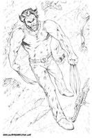 Wolverine by bphudson