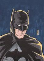 PSC - Batman by The-Real-NComics
