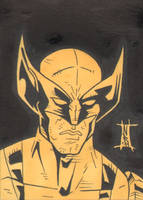 PSC - FCC - Wolverine by The-Real-NComics