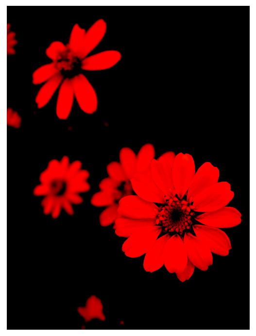 Crveno kao ljubav - Page 2 Red__by_deliriouslysomebody