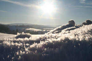 Winter Poetry 23 by Shijakjin