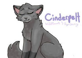 Cinderpelt .:COLLAB:. by Royal-Stocking