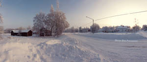 Winter in the countryside