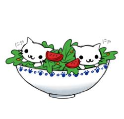 Nyanko Salad by MultiColoredCrow