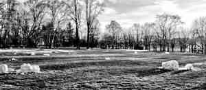Field Of Dead Snowmen