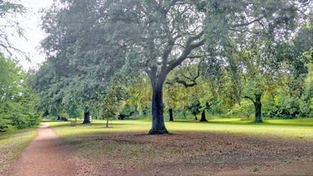 Kew 03