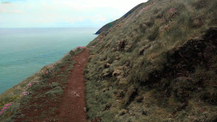 Coastal (Uncertain Path XV)