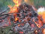 fune-stock_fire3