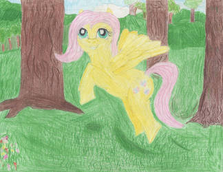 Fluttershy by GuillermoGage