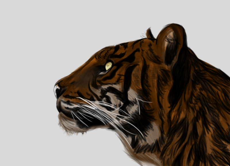 Quick tiger by valdrianth
