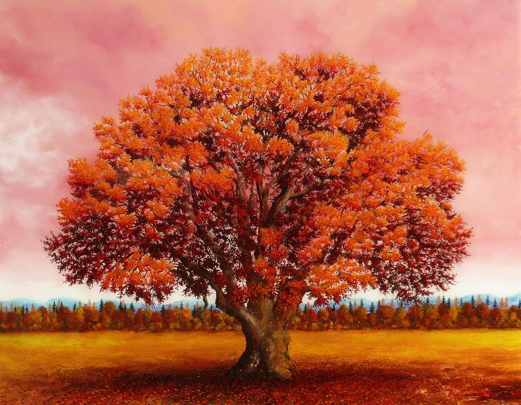 Red Oak Tree ~ Red oak tree by busellatocarlo on deviantart