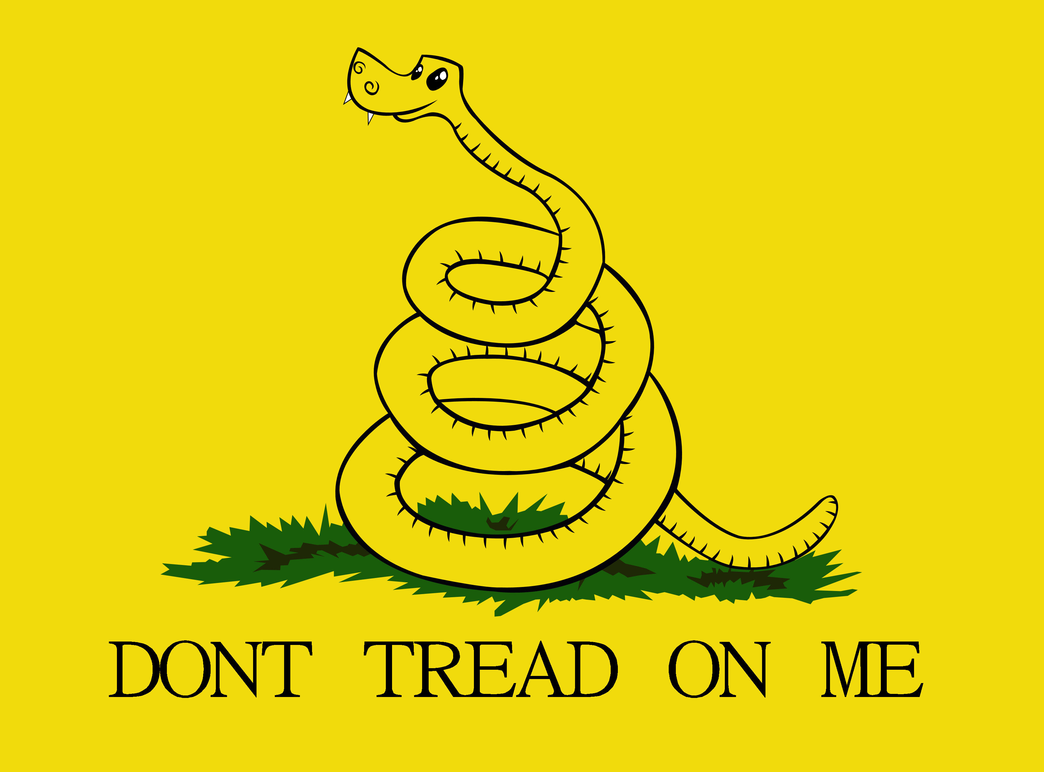Don't tread on me Flag by GennadyKalugina on DeviantArt