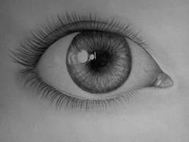 The eye by Anetta035