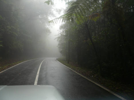 Driving into the mist