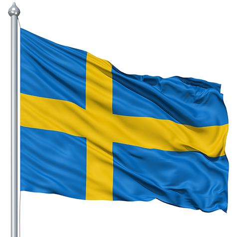 Swedenflagpicture1 by leonarstist06