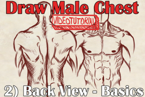 VideoTutorial on Drawing the Male Chest Back View by Dex91