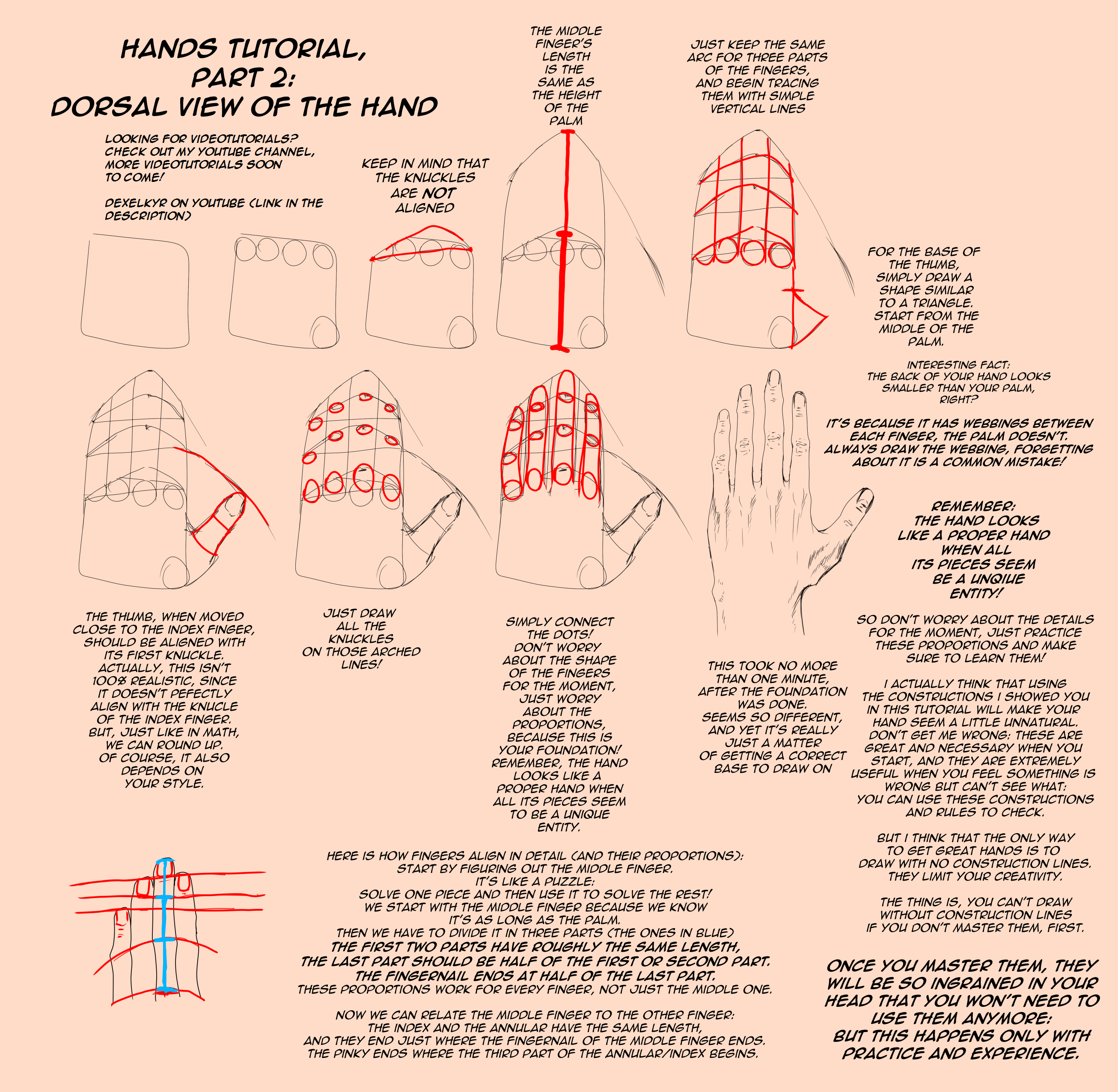 HANDS TUTORIAL, Dorsal View [Part 2] by Dex91 on DeviantArt