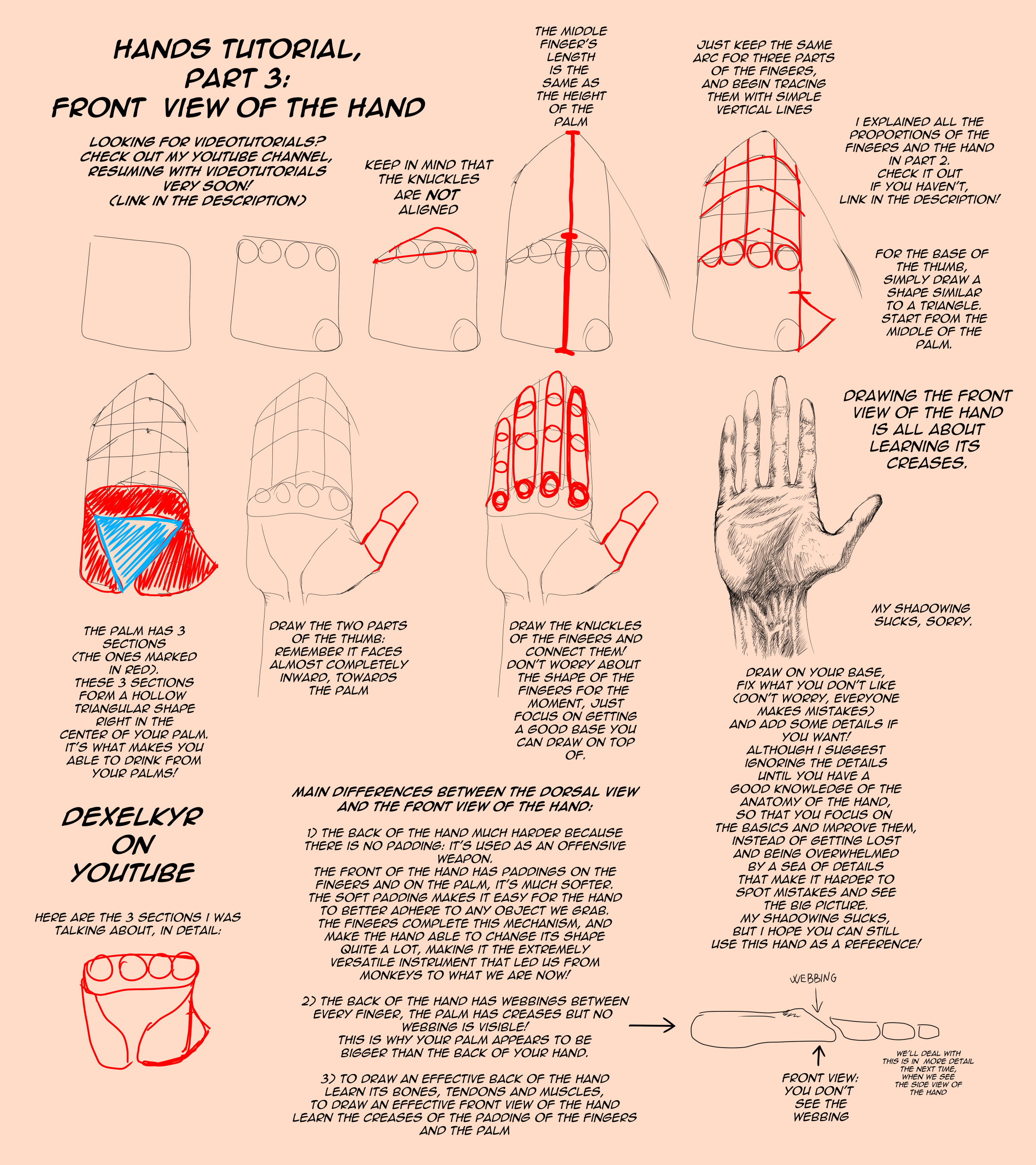 HANDS TUTORIAL, Front View [Part 3] by Dex91
