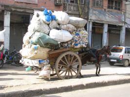 Horse, Tanga, Load
