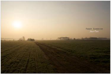 Foggy Sunshine by Piurek