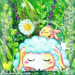 My Daisy Dream