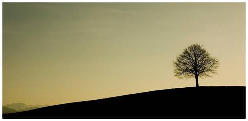 Tree by io3