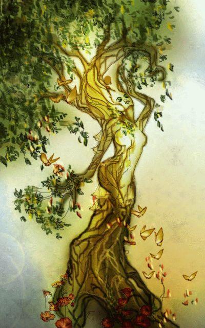 Dryad reborn by Naralim