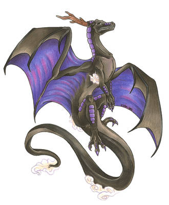 Shadow Dragon by Nathaldron