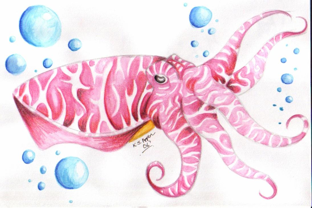 Cuttlefish by Nathaldron
