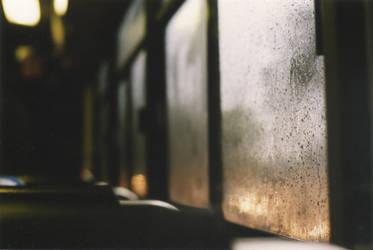 drops on windows in buses by VeraAda