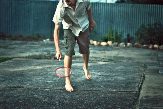 backyard badminton