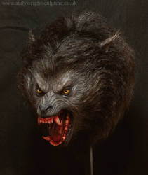 American werewolf life size bust  indoors 2