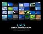 Linux: where dreams come true.