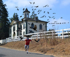 My trip to Bodega Bay...