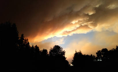 Northern California fires