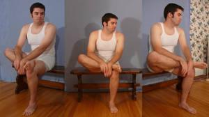 Tuxedo Jay Sitting 2