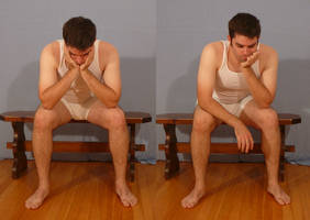 Tuxedo Jay Sitting 4 by SenshiStock