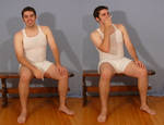 Tuxedo Jay Sitting 6 by SenshiStock