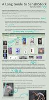 A (Really) Long Guide to SenshiStock