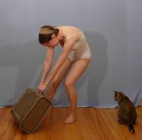 Sailor Suitcase 2 by SenshiStock
