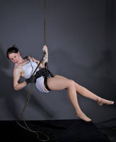 Rope Harness Lowering - Pose Reference