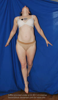 Fly - Pose Reference Figure Model