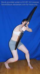 Point Blank Archer by SenshiStock