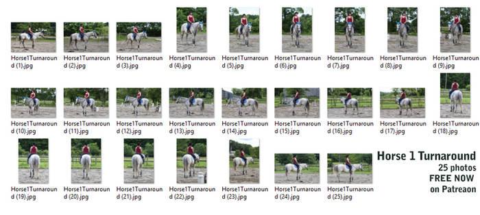 Horse 1 Turnaround - Free Now on Patreon!