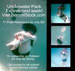 EXPIRING! SenshiStock.com Underwater Pack!