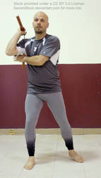Martial Arts Model Figure Nunchaku Reference by SenshiStock